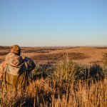 Coyote Hunting in Kansas at 10 Gauge Outfitters