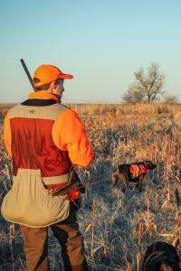 Best Pheasant Hunting Lodge