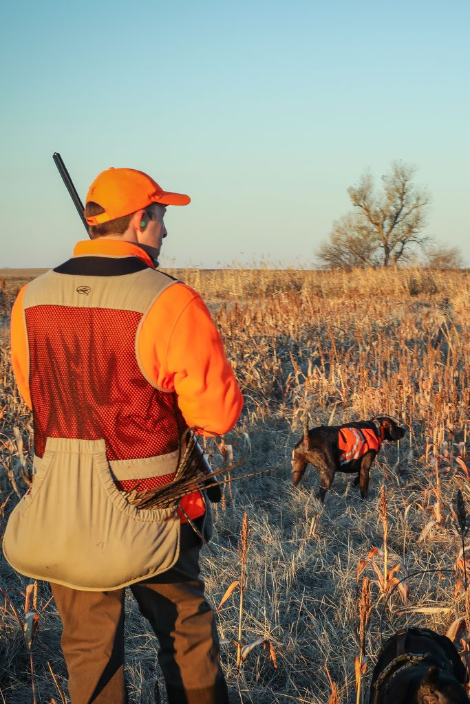 Best Pheasant Hunting Lodge