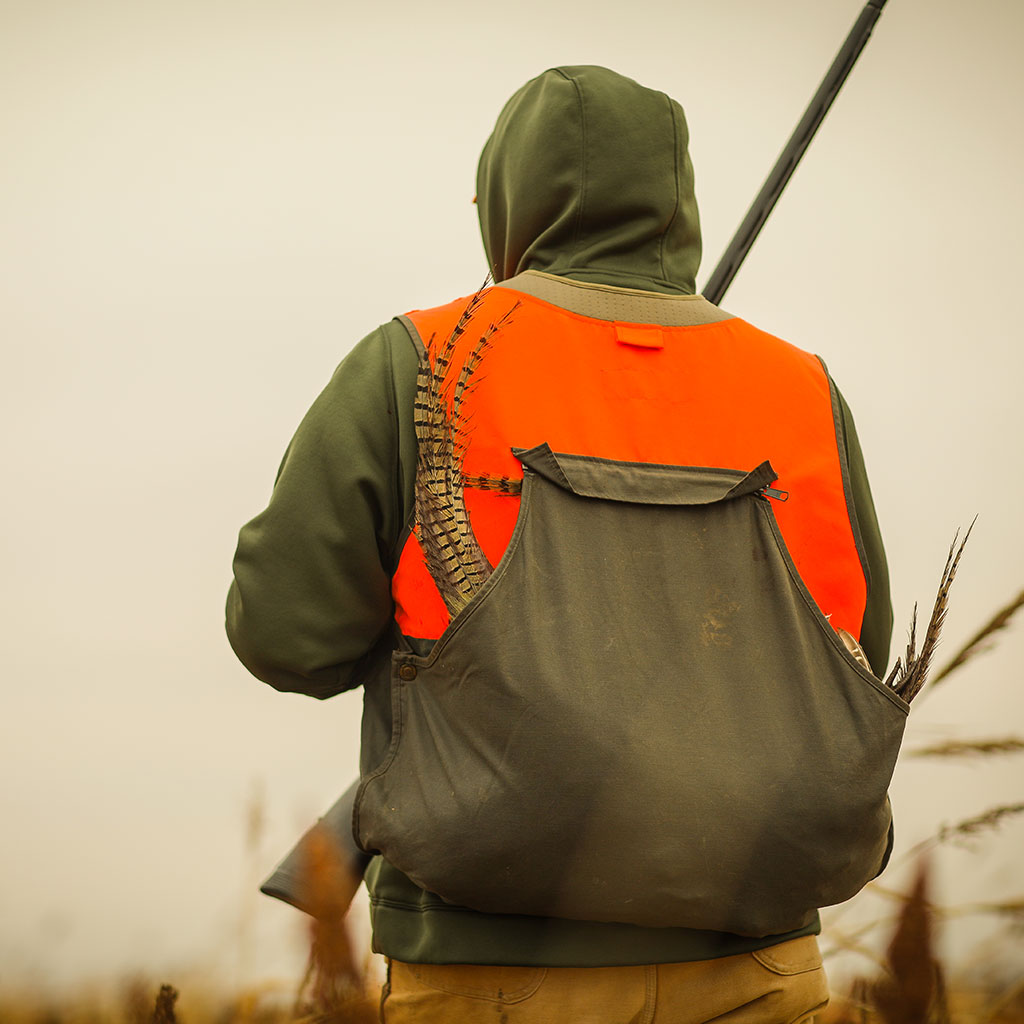 Kansas Pheasant Hunting Seasons